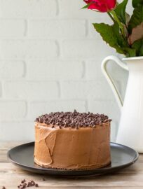 One-bowl mini chocolate cake with mocha buttercream.