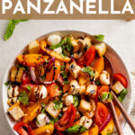 Impress your friends or round out family dinner with this drool-worthy Marinated Mozzarella Panzanella! Perfect for using ripe late summer tomatoes, with creamy mozzarella, crunchy bread, fresh herbs, and tangy balsamic glaze. #panzanella #tomatosalad #mozzarella